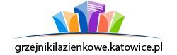 Grzejniki łazienkowe i dekoracyjne Katowice
